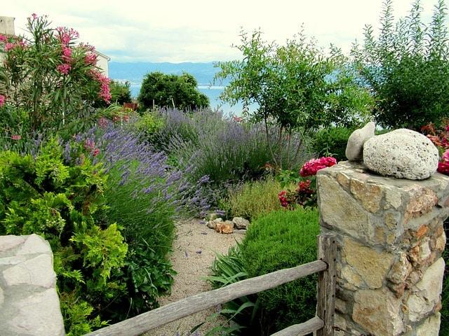 Avec ces 6 plantes, votre jardin méditerranéen cessera d'être terne !