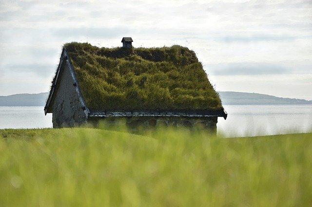 Traiter son toit avec l'anti-mousse Algimousse