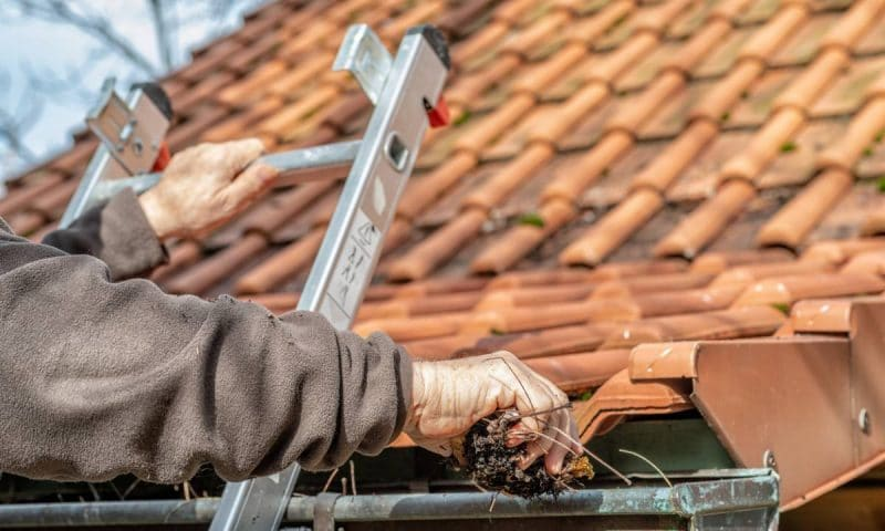 Démousser la toiture pour un coup de neuf