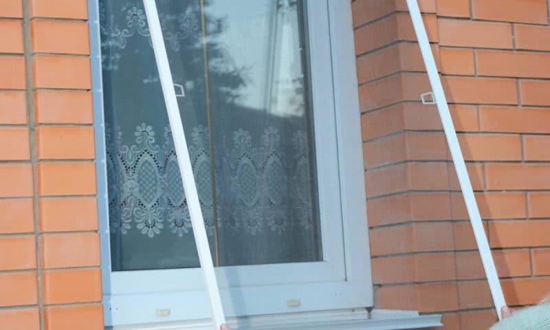 Moustiquaires : protégez vos fenêtres et portes